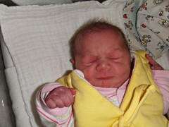 Fiona (w)<br /> *14.04.2014<br /> 3360 g<br /> 52 cm